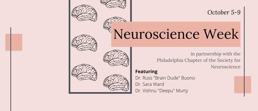 Neuroscience Week with Skype a Scientist: Oct 5-9